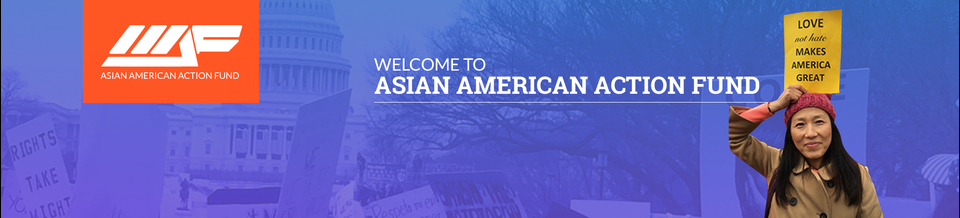 Asian American Action Fund