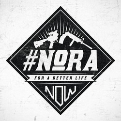 Newtown Action Alliance