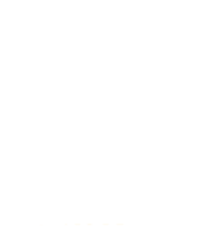 Rainforest Fund