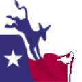 Image of Nueces County Democratic Party (TX)
