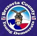 Image of Brazoria County Young Democrats