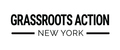 Image of NY Progressive Action Network - Grassroots Action NY