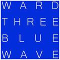 Image of Ward 3 Blue Wave Democrats