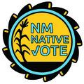 Image of NM Native Vote