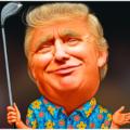 Image of Dump the Chump