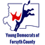 Image of Young Democrats of Forsyth County (NC)