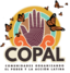 Image of COPAL in Action!